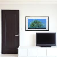「大樹」(¥155,520)額縁のサイズ・イメージ
