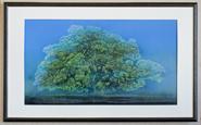 大樹¥155,520
