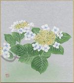 型染色紙(初夏の柄)